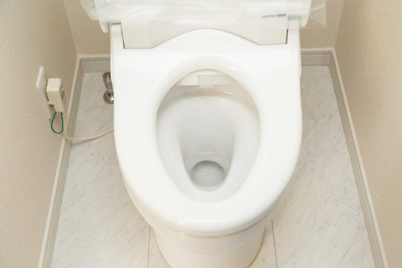 トイレのつまりを解消するトーラーの構造は?