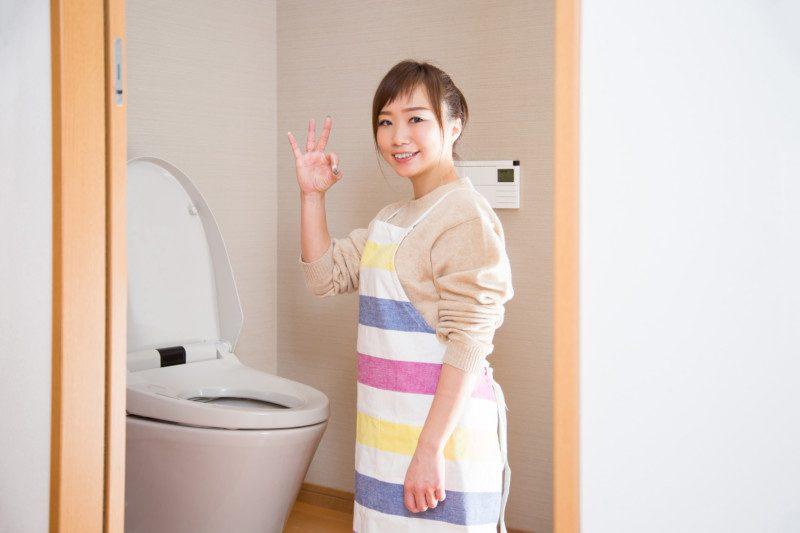 ピーピースルーでトイレのつまりを直す方法