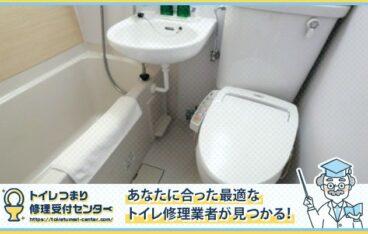 トイレ詰まり パイプユニッシュ